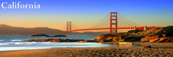 California Professional Employment Contract Reviews