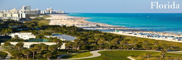 Florida-Physician-Contract-Attorney