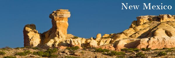 New-Mexico-Physician-Contract-Attorney