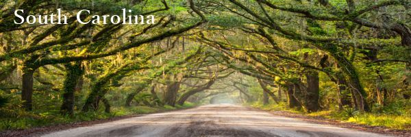 South-Carolina-Physician-Contract-Attorney